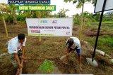 PT Cahaya Riau berdayakan petani madu melalui zakat yang dikelola ACT