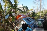 Angkot di Baubau terperosok ke jurang