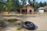 10 desa di Nagan Raya Aceh terendam banjir