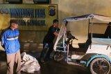 Polisi tangkap pelaku pembuangan bangkai babi di Helvetia
