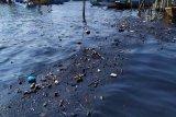 Pencemaran minyak di laut Batam berkurang