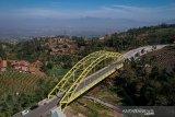 Foto udara Jembatan