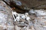 Peneliti temukan situs penguburan prasejarah di Pulau Roon