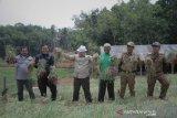 Desa Tungkujaya OKU  perluas lahan tanam budidaya  bawang merah