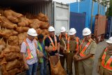 Thailand tolak kelapa Sumsel, Eksportir rugi milyaran rupiah