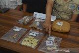 Tangan Kasi Pemberantasan BNNK Ciamis Kompol Ricky Lesmana menunjukan barang bukti narkoba pada Press release di Kantor BNNK Kabupaten Ciamis, Jawa Barat, Rabu (20/11/2019). BNNK Ciamis menangkap seorang ibu rumah tangga berinisial EK alias AY (39) pengedar narkoba dengan barang bukti berupa paket sabu-sabu sebanyak 26 paket siap edar yang dikemas dalam sedotan plastik serta ganja kering seberat 926,27 gram. ANTARA FOTO/Adeng Bustomi/ANTARA FOTO/ADENG BUSTOMI (ANTARA FOTO/ADENG BUSTOMI)