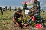 TNI-Polri bersama masyarakat tanam ribuan pohon buah di Sigi