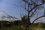 Kepulan asap keluar dari cerobong pabrik tahu yang menggunakan bahan bakar sampah plastik di Tropodo, Sidoarjo, Jawa Timur, Rabu (20/11/2019).  Pabrik tahu di wilayah tersebut terpaksa menggunakan sampah plastik sebagai bahan bakar karena harganya yang murah. Walaupun asap yang dihasilkan akibat pembakaran sampah plastik dapat menghasilkan zat dioksin yang dapat meracuni manusia, tumbuhan, binatang dan mencemari udara. Antara Jatim/Zabur Karuru