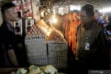 Harga telur ayam di Kupang alami kenaikan