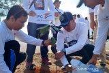 PT Pelabuhan Indonesia II hijaukan objek wisata Pantai Air Anyir