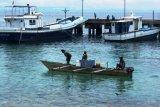 Dinas Perikanan: Ikan tangkapan nelayan Biak Numfor bebas mercuri