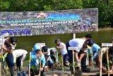 Prajurit TNI AL bersama masyarakat tanam mangrove di pesisir Sorong