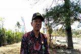 Kulon Progo wacanakan mengembangkan agrowisata kawasan pesisir selatan