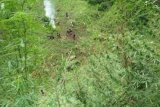 Polisi berhasil temukan tujuh Hektare ladang ganja di Pegunungan Tor Sihite