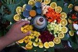 Festival kuliner buah dan sayur