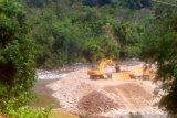KPHP Pesisir Selatan tinjau lokasi dugaan penyalahgunaan izin PT Dempo di Pelangai