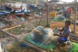 Nelayan Lampung Timur sebutkan hasil tangkapan rajungan sedikit