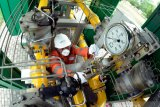 Pemanfaatan gas bumi untuk listrik di Lampung