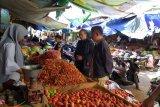 Distan:  kenaikan harga tomat akibat pasokan kurang