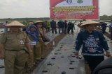 Pemkab Kapuas harapkan dukungan BI kembangkan tanaman bawang merah