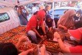 TPID-BI Operasi Pasar Tomat Tekan Inflasi Manado