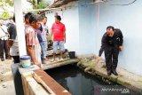 Wawako Solok langsung tinjau drainase di Berok yang dikeluhkan warga