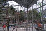Pemkot Mataram mengusulkan RTH Pagutan jadi hutan kota