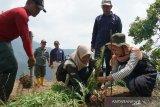 Mahasiswa UMK tanam 11.000 pohon di Pegunungan Muria