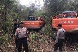 Proses hukum di pengadilan belum selesai, polisi hentikan paksa perluasan kebun sawit