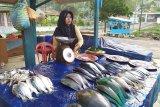 Harga ikan laut di Bandarlampung stabil meski musim berangin
