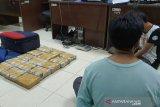 BNN NTB telusuri pemilik ganja 15 kilogram