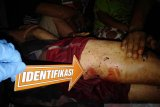 Petani di Ogan Komering Ulu diduga tewas akibat diserang Beruang