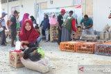 Korban bencana Sigi dapat bantuan ternak