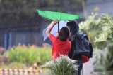 KBRI Filipina: Tidak ada laporan kontingen Indonesia terimbas badai Kammuri