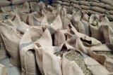 Nilai tukar petani di Lampung naik
