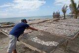 Usaha pengolahan ikan asin di Agam alami kerugian akibat musim penghujan
