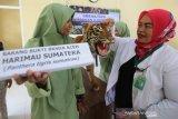 Koordinator Perawatan Satwa Balai Konservasi Sumber Daya Alam (BKSDA) Aceh Taing Lubis (kanan) memberikan penjelasan tentang satwa dilindungi pada pelajar di SMA Negeri 1 Suka Makmur, Aceh Besar, Aceh, Rabu (4/12/2019). BKSDA Aceh menggelar sosialisasi konservasi satwa dan tumbuhan langka pada pelajar sebagai edukasi untuk menjaga alam serta habitat satwa dilindungi sesuai UU nomor 5/1990 tentang konservasi sumber daya alam dan ekosistim. Antara Aceh / Irwansyah Putra.
