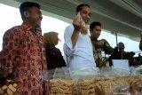 Tanggapan Jokowi setelah dinobatkan sebagai