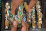 Peserta menampilkan beberapa jenis batu mulia atau batu akik pada pameran dan kontes batu di Meulaboh, Aceh Barat, Aceh, Jumat (6/12/2019). Pameran dan kontes batu yang berlangsung hingga 8 Desember tersebut bertujuan untuk membumingkan kembali kejayaan batu akik dan batu mulia di Provinsi Aceh. Antara Aceh/Syifa Yulinnas.