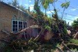 Empat rumah rusak tertimpa pohon di Agam