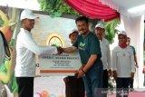 Kementan perkuat ketahanan pangan melalui Gelar Pangan Lokal Berbasis UMKM
