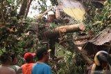 Petugas mencari korban di bangunan mushola dan warung yang ambruk tertimpa pohon di kawasan wisata Sumber Jiput, Kota Kediri, Jawa Timur, Senin (9/12/2019). Bencana angin kencang yang disertai hujan lebat di daerah tersebut mengakibatkan satu orang meninggal dunia, tiga mobil rusak, dan sejumlah bangunan roboh. Antara Jatim/Prasetia Fauzani/zk.