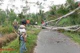 BPBD Sleman mengaktifkan posko tanggap darurat di Desa Sendangrejo