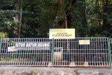 BPCB selesaikan renovasi pagar Situs Batur Agung Banyumas