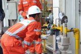 PGN salurkan energi ke UMKM  di Palembang
