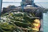 Nelayan Agam diwajibkan pasang rumpon sebelum menangkap ikan, ini tujuannya