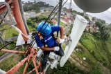 XL Axiata prediksi trafik di Padang dan Bukittinggi melonjak saat libur akhir tahun