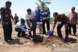 Gubernur canangkan Gerakan NTB Hijau di Sumbawa