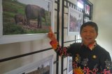 Antara diharapkan sebarkan kemajuan pembangunan Lampung Timur