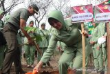 TNI AD tanam 3.000 bibit pohon di Hutan Kota Palu